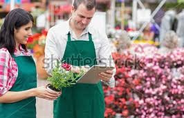comparative net sales of flower shops Shopcom marketplace offers great deals on clothes, beauty, health and nutrition, shoes, electronics, and more from over 1,500 stores with one easy checkout  online shopping marketplace at shopcom we make shopping easy by allowing shoppers.